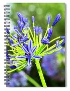 Agapanthus Bokeh Spiral Notebook
