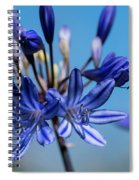 Agapanthus Spiral Notebook