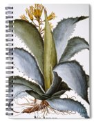 Agave, 1613 Spiral Notebook