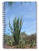 Agave And Cactus Spiral Notebook