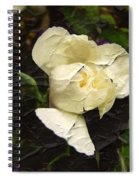 Age Cannot Wither Spiral Notebook