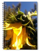 Age Of Beauty Spiral Notebook