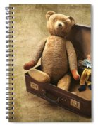 Aged Toys Spiral Notebook
