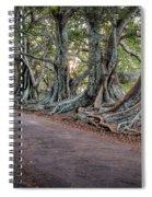 Ageless Norfolk Spiral Notebook