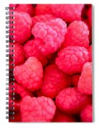 Agenda For Today ... Raspberry Jam Spiral Notebook
