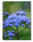 Ageratum Blue Spiral Notebook