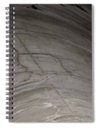 Aging Aggregate Spiral Notebook