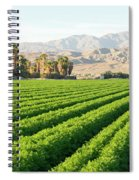 Agriculture In The Desert Spiral Notebook