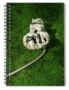 Aguished Leaf Spiral Notebook