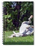 Ahhhhhhhhhh Spiral Notebook