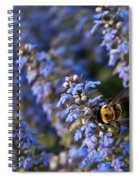 Ajuga And Bumblebee Spiral Notebook