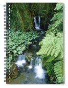 Akaka Falls Stream Spiral Notebook