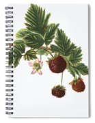 Akala Berries Spiral Notebook