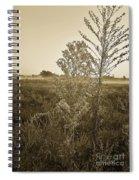 Alabama Autumn Spiral Notebook