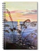 Alabama Sunset Spiral Notebook