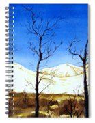 Alaska Blue Sky Day  Spiral Notebook