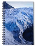 Alaska Exit Glacier Spiral Notebook