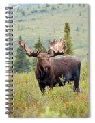 Alaska Monarch #3 Spiral Notebook