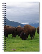 Alaska Wood Bison Spiral Notebook