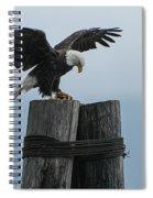 Alaskan Bald Eagle Spiral Notebook