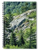 Alaskan Wilderness Spiral Notebook