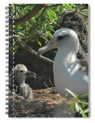 Albatross Mom And Baby Spiral Notebook