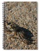 Ale Eke Ohiki Kuau Sand Crab Spiral Notebook