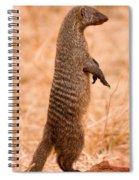 Alert Mongoose Spiral Notebook