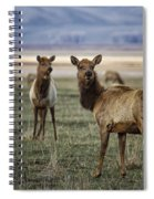 Alert On The Home Front Spiral Notebook