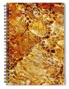 Alfred Caldwell Lily Pool Springs 2 Spiral Notebook