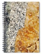 Alfred Caldwell Lily Pool Springs 3 Spiral Notebook