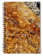 Alfred Caldwell Lily Pool Springs Spiral Notebook