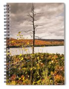 Algonquin Autumn Spiral Notebook