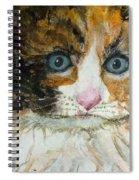 Ali Cat 1 Spiral Notebook