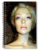 Alice In Alley Spiral Notebook