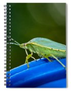 Alice The Stink Bug 2 Spiral Notebook