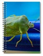 Alice The Stink Bug 3 Spiral Notebook