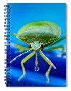 Alice The Stink Bug 4 Spiral Notebook