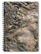 Alien Landscape Spiral Notebook