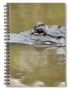 Alligator Stealth Spiral Notebook