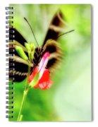 All A-flutter Spiral Notebook