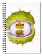 All About Autumn Spiral Notebook