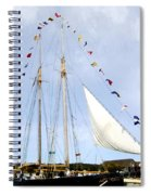 All Flags Flying Spiral Notebook