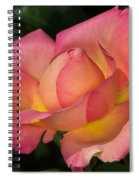 All It's Glory Spiral Notebook