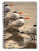 All Lined Up Spiral Notebook