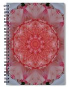 All Points South Spiral Notebook