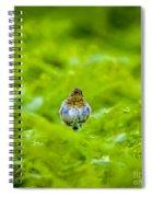 All Puffed Up Spiral Notebook