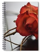 All Tangled Up Spiral Notebook