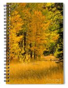 All The Soft Places To Fall Spiral Notebook