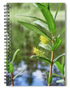 All Traps Set. Creeping Willow Spiral Notebook